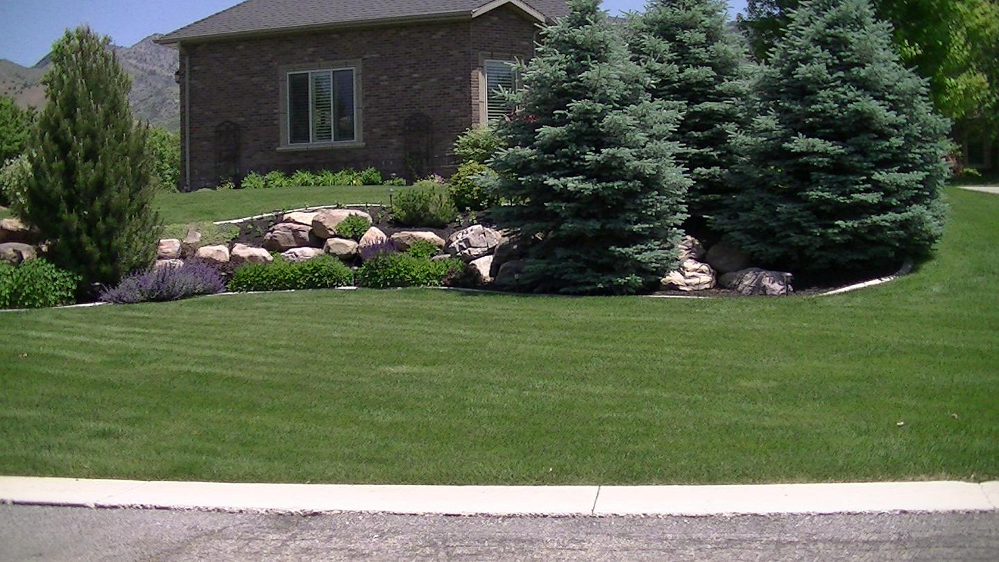Click Here to learn about the benefits of Hydroseeding.